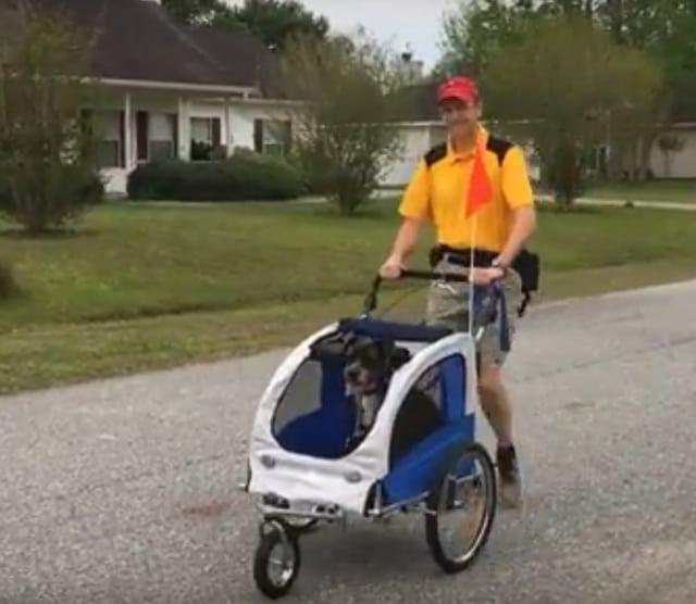 Tripawd's dog stroller