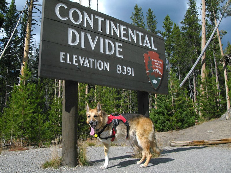 Tripawds Founder Jerry at the Continental Divide in Yellowstone National Park