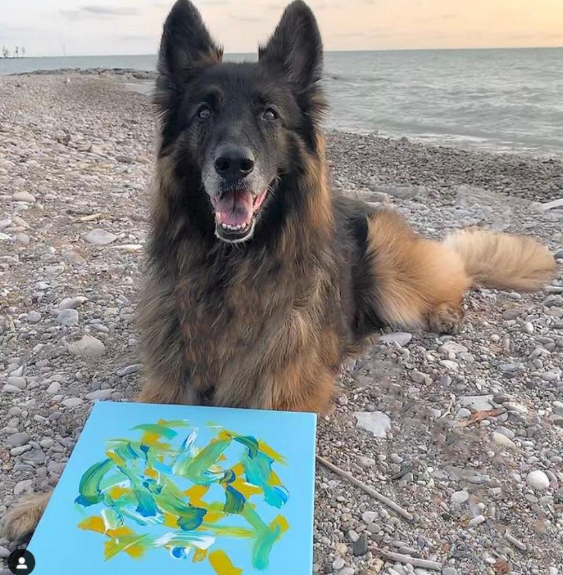 Kaiserin the Painting Dog