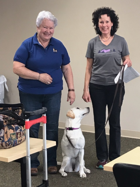 Tripawds can compete in AKC Rally and Obedience