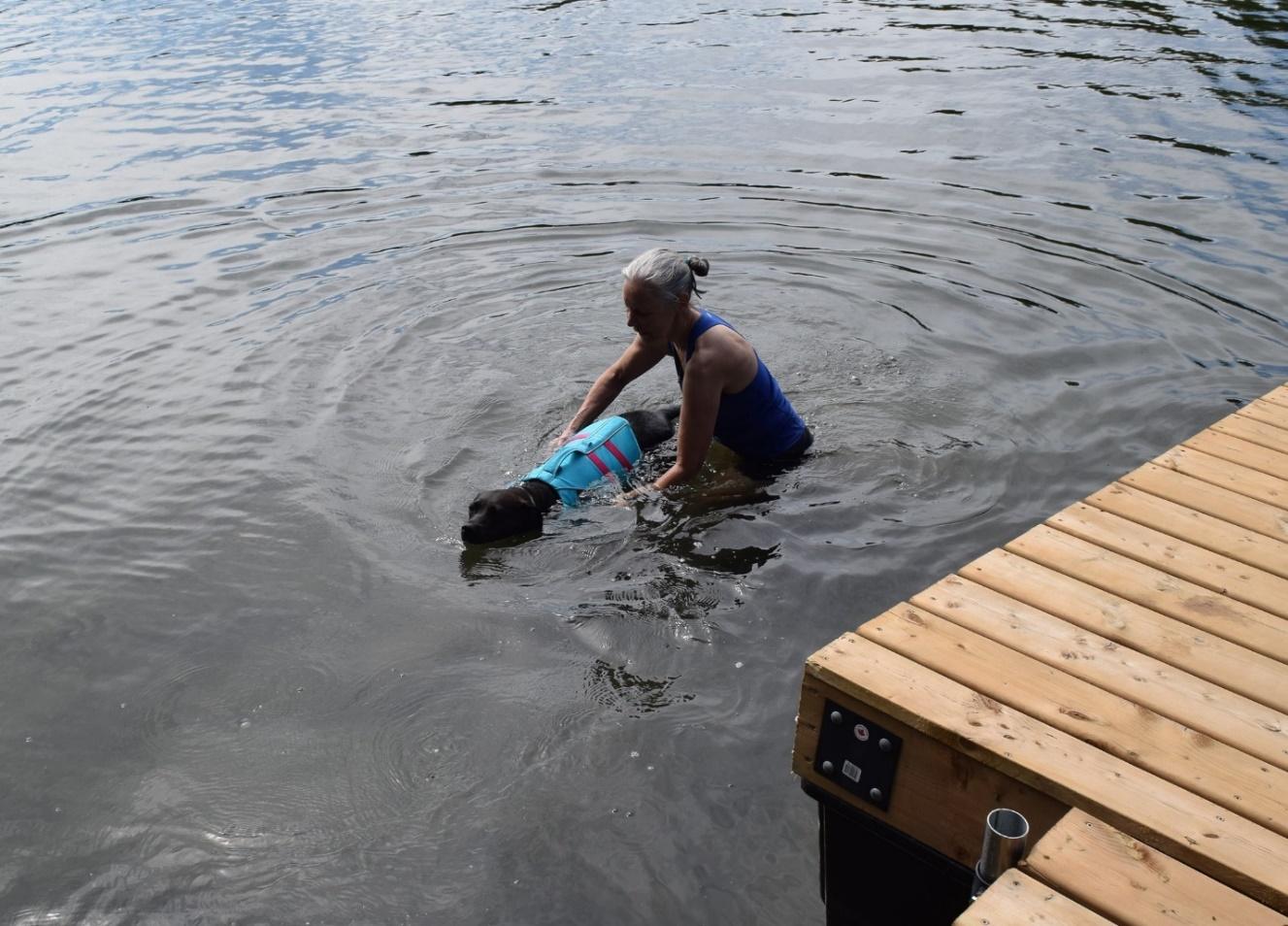 amputee dog swimming