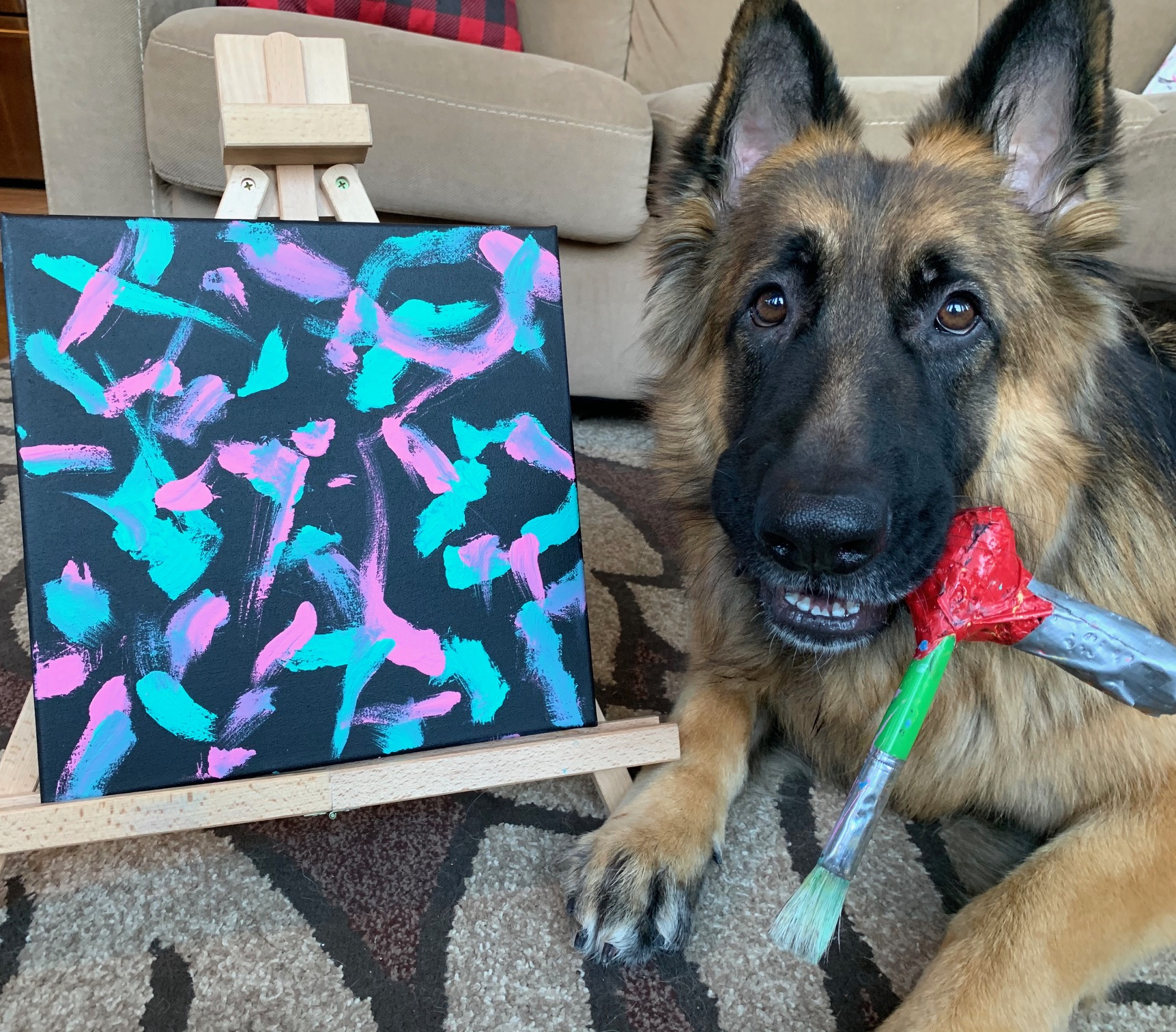 German Shepherd paints for pets with cancer