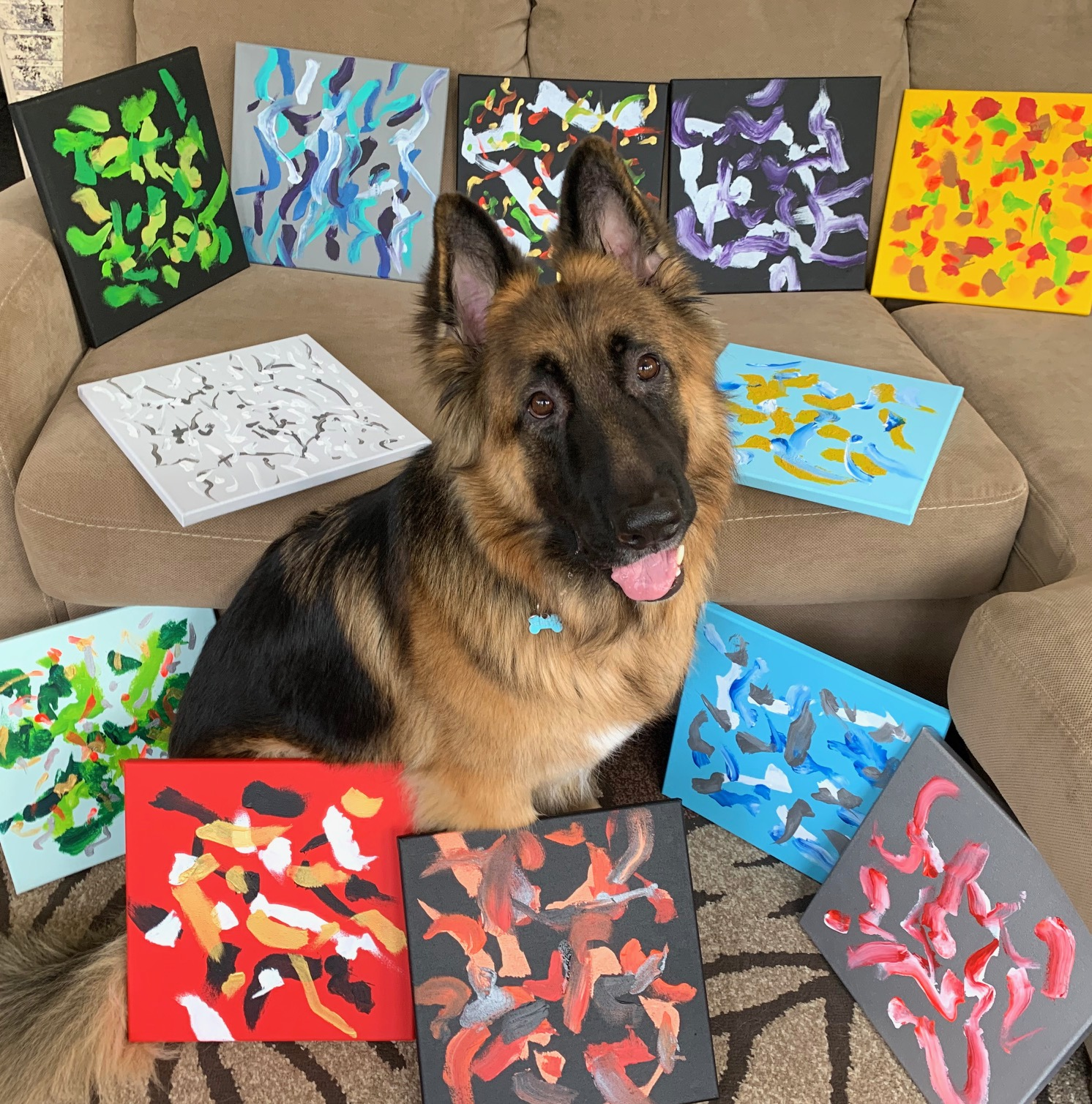 Gift baskets help amputee pets