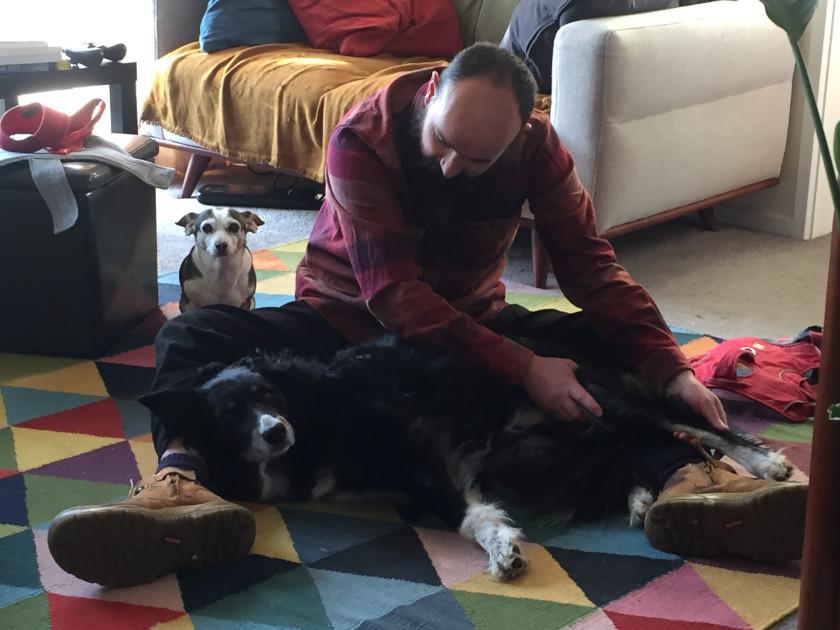 angular leg correction surgery therapy