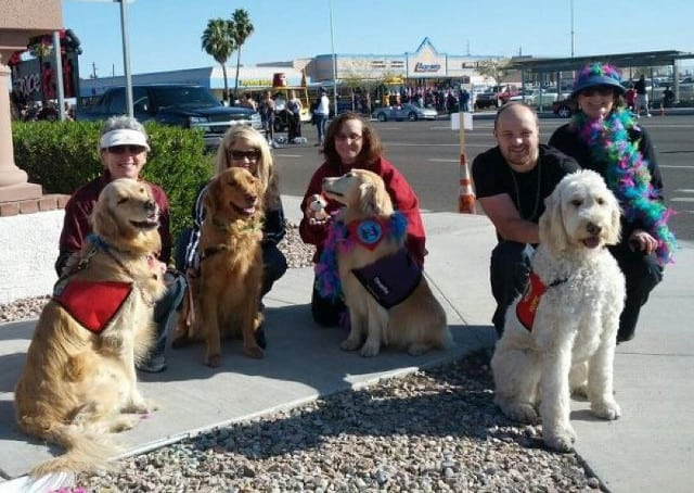 Tripawd Hope and Therapy Dog Friends