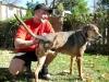 Jim meets three legged rock star dog Frankie